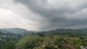 Campos de la plantaci?n de t? del asiento de Sri Lanka Lipton en Nuwara Eliya time lapse durante salida del sol con las nubes que almacen de video