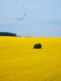 Campos de la violación de la visión aérea con los molinoes de viento Imagenes de archivo