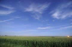 Campos de maíz en la noche en Iowa Imagen de archivo libre de regalías