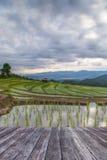 campos de madera del piso y del arroz de la terraza de la agricultura de Blured en el m fotografía de archivo libre de regalías