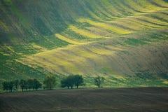Campos de Moravian Foto de Stock Royalty Free