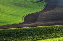 Campos de Moravian Fotografía de archivo