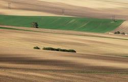Campos de Moravian Fotos de archivo