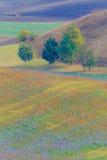 Campos de Moravian imagens de stock royalty free