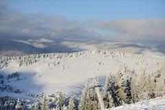 Campos de neve fotos de stock