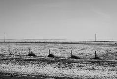 Campos de nieve Fotografía de archivo libre de regalías