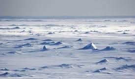 Campos de nieve antárticos Fotografía de archivo