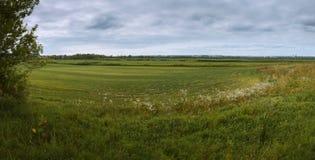 Campos de Serpukhov Fotografia de Stock