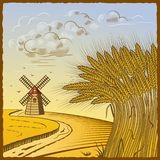 Campos de trigo ilustración del vector