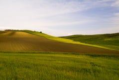 Campos de trigo, Apulia, Italia Imágenes de archivo libres de regalías