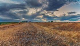 Campos de trigo colhidos sobre o céu nebuloso fotografia de stock