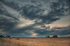 Campos de trigo colhidos sobre o céu nebuloso fotos de stock