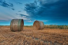 Campos de trigo colhidos sobre o céu nebuloso imagem de stock