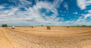 Campos de trigo cosechados fotos de archivo libres de regalías