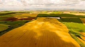 Campos de trigo en Bulgaria fotografía de archivo libre de regalías