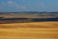Campos de trigo en las montañas imagen de archivo libre de regalías