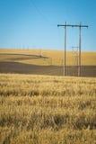 Campos de trigo, linhas eléctricas, Washington oriental Fotos de Stock Royalty Free