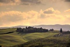 Campos de Tuscan Fotografia de Stock Royalty Free