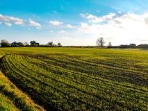Campos de Welwyn Foto de Stock