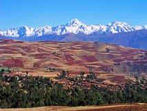 Campos del Altiplano Imagen de archivo libre de regalías