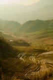 Campos del arroz de las escaleras, Vietnam Imagenes de archivo