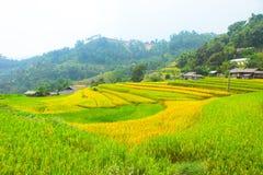 Campos del arroz en colgante Los campos se preparan para plantar el arroz Prohibición Phung, Huyen Hoang Su Phi, provincia de Ha  foto de archivo