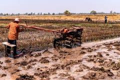 Campos del arroz que se han cosechado y se est?n preparando para el establecimiento siguiente del arroz imagenes de archivo