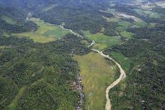 Campos del arroz y paisaje verde Imagenes de archivo