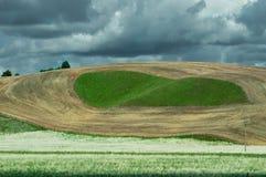 Campos del balanceo cosechados al rastrojo Imagenes de archivo