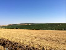 Campos del granjero Fotos de archivo