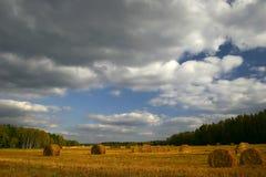 Campos del otoño de Rusia Foto de archivo