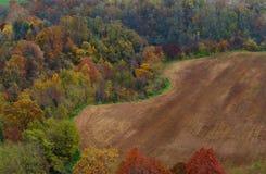 Campos del otoño en Italia Fotografía de archivo