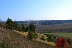 Campos del otoño en Udmurtia Fotos de archivo libres de regalías