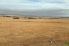 Campos del paisaje agrícola australiano Fotografía de archivo