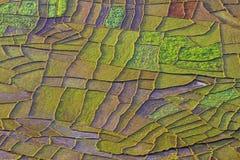 Campos del remiendo imagen de archivo