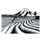 Campos del té de Japón stock de ilustración