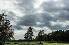 Campos del Wieden Fotografía de archivo libre de regalías