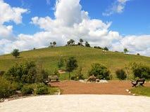 Campos do aipo de Sarasota, parque da cidade fotos de stock