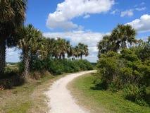 Campos do aipo de Sarasota, parque da cidade foto de stock royalty free