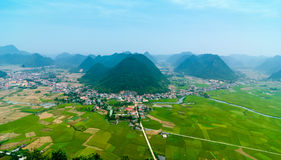 Campos do arroz no noroeste de Vietname Imagens de Stock Royalty Free