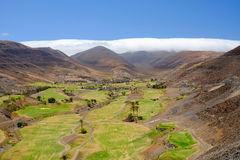 Campos do golfe em Fuerteventura, Espanha Imagens de Stock Royalty Free