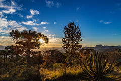 Campos do Jordao, Brazil. Pedra do Bau view at sunset golden ho Royalty Free Stock Photo
