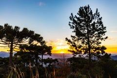 Campos do Jordao, Brazil. Pedra do Bau view at sunset. Golden hour Royalty Free Stock Image