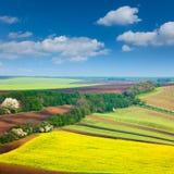 Campos do ountryside do ¡ de Ð e fundo coloridos do céu - landsca da natureza Imagem de Stock