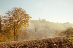 Campos do outono Fotografia de Stock