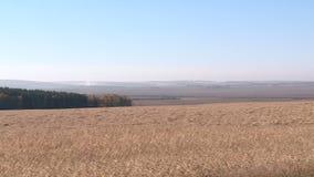 Campos do outono de trigo nos Ural video estoque