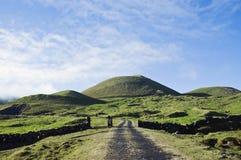 Campos do pasto no console de Pico, Açores Fotografia de Stock