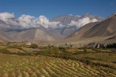 Campos do vale de Jhong Khola imagem de stock royalty free