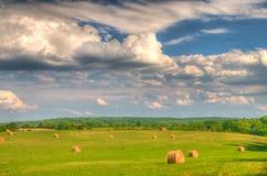 Campos do verão em Virgínia fotos de stock