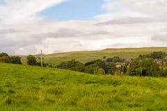 Campos e árvores Foto de Stock